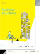 businessstructureebook.png